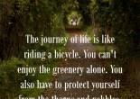 Life Quote on Journey